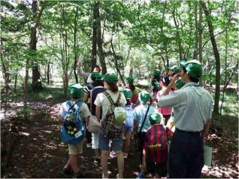 自然を学ぶガイドツアー